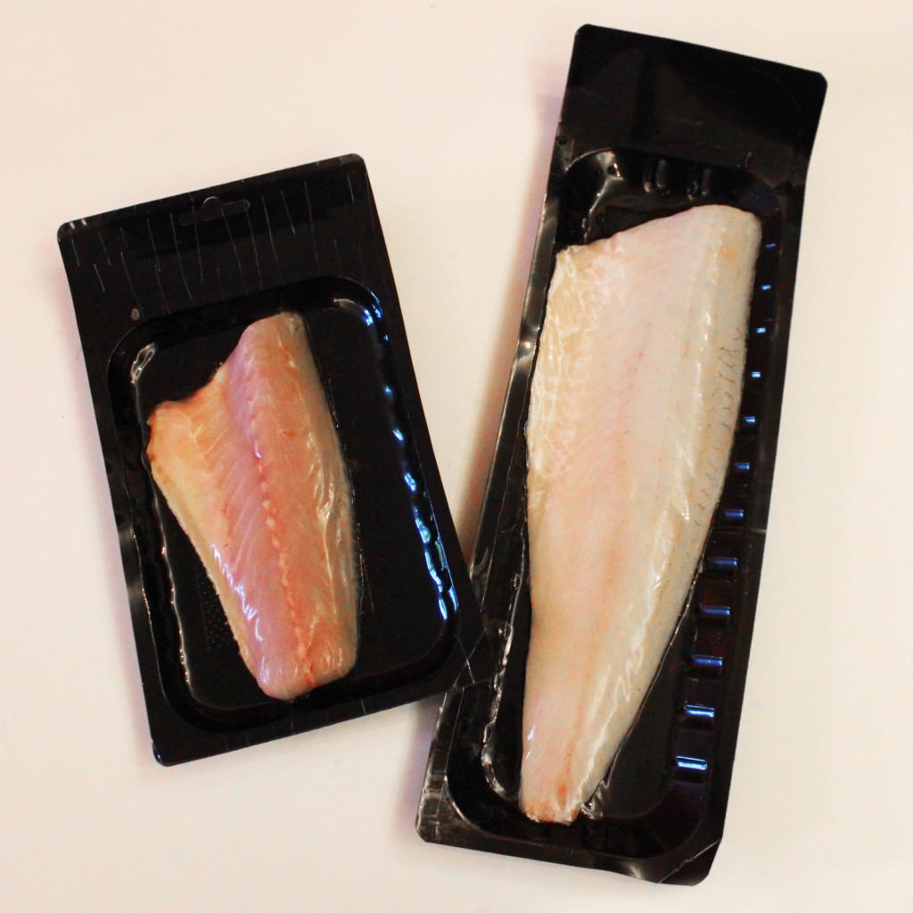 dvě-ryby