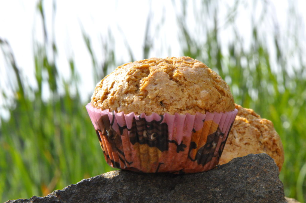rohlik-peceni-muffinky